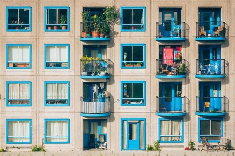 Wystrój balkonu – jakie rośliny warto kupić?